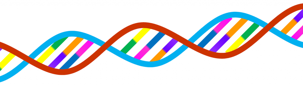 DNA testing by Functional Nutritionist