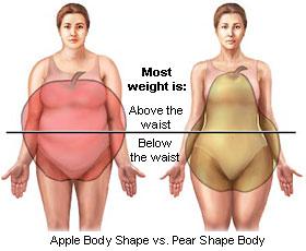 apple vs pear body shape