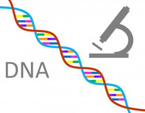 epigenetics science to health
