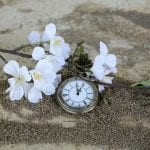 pocket watch on sand with flowers